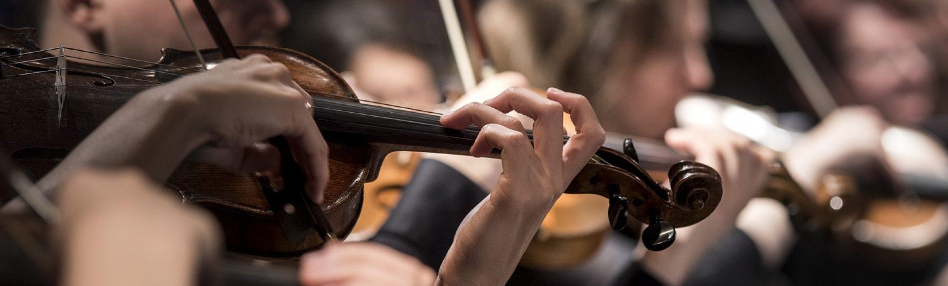 Zuid-Hollands Symfonie Orkest
